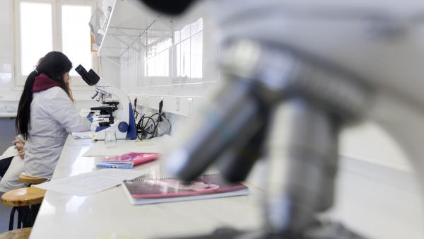 CFGS Laboratori clínic i biomèdic
